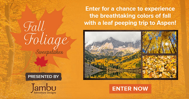 Hallmark Channel Fall Foliage Sweepstakes