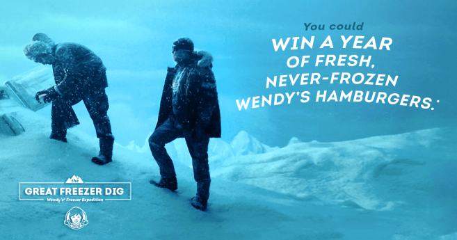 Wendy's Freezer Dig Sweepstakes (FreezerDig.com)
