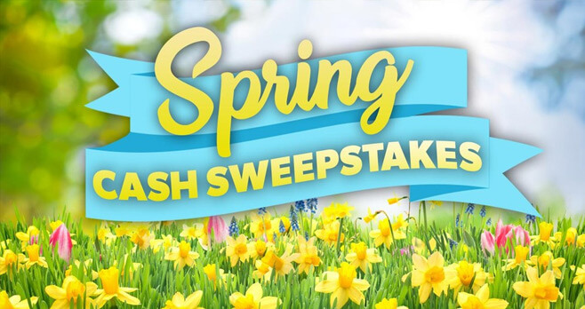 The View Spring Cash Sweepstakes 2017
