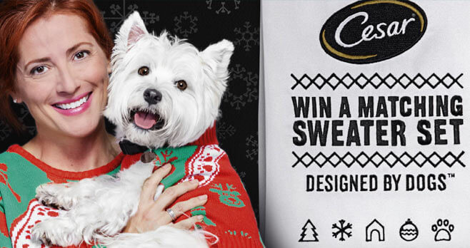 CESAR Twinning Holiday Sweater Sweepstakes