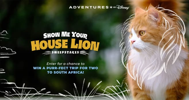 Disney Show Me Your House Lion Sweepstakes