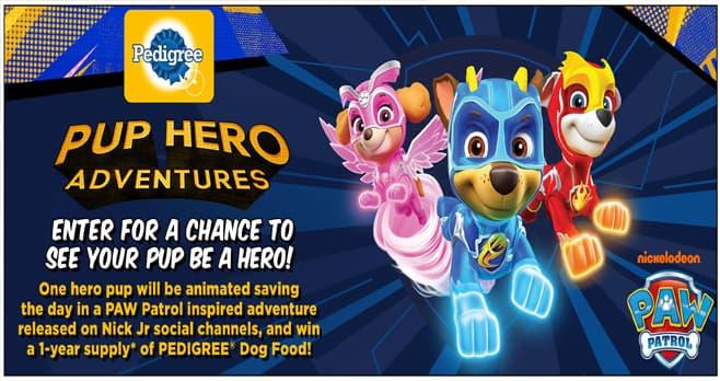 Pup Hero Adventures Contest