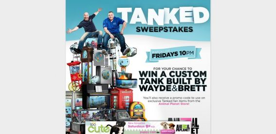 AnimalPlanet.com/TankedSweeps – Animal Planet Tanked Watch and Win Sweepstakes
