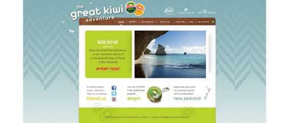 The Great Kiwi Adventure Sweepstakes