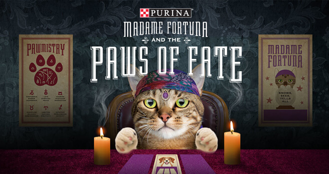 Purina Save A Fortune 2.0 Sweepstakes