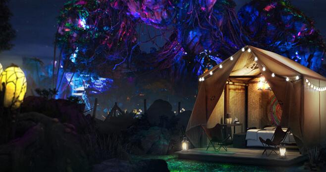 Disney D-CAMP at Walt Disney World Resort Contest