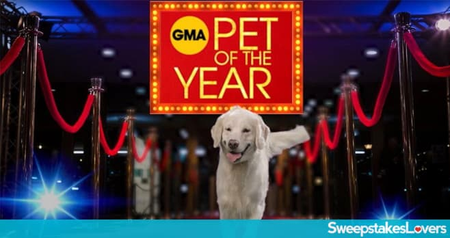 GMA Pet of the Year Contest
