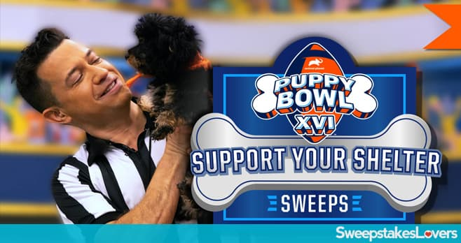 Animal Planet Puppy Bowl 2019 Sweepstakes