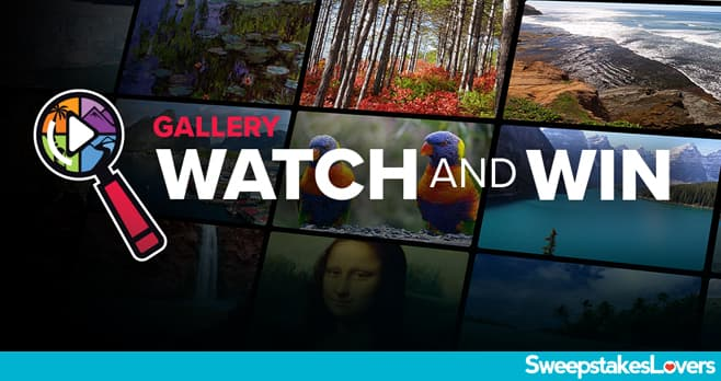 Dish scapes Watch And Win Contest 2021